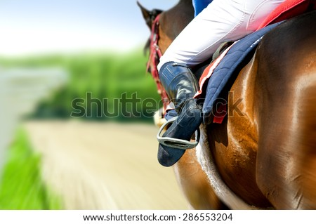 running racing thoroughbred horse coming first on hippodrome racetrack detail Royalty-Free Stock Photo #286553204