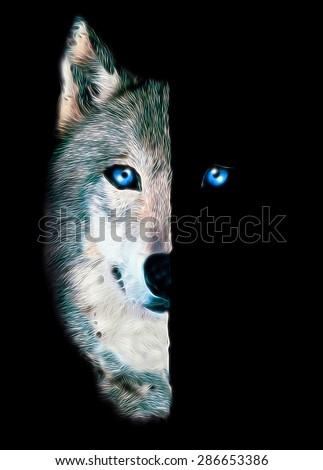 Wolf print.Animal art