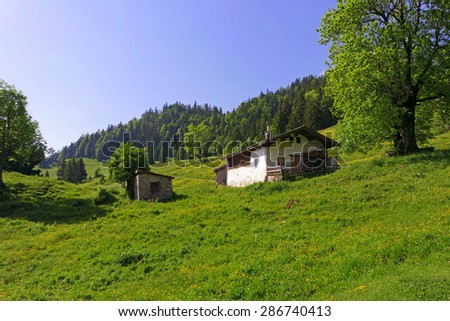 Austria, Tyrolean alps with an old typical house #286740413
