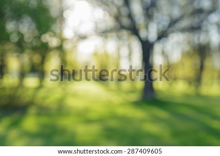 defocused bokeh background of apple garden with blossoming trees  in sunny day, backdrop Royalty-Free Stock Photo #287409605