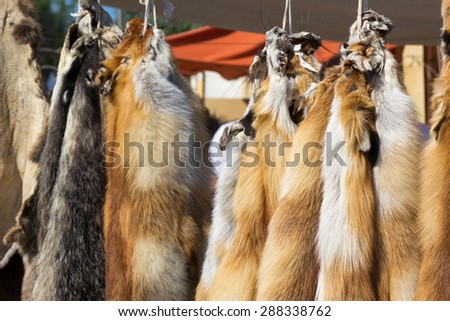 pelts of fur animals hang on a rope #288338762