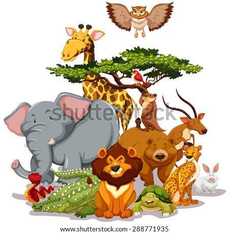 Cartoon wild animals background Stock Photo 454611238 - Avopix.com