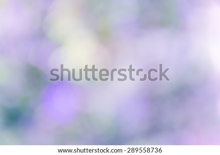 beautiful natural bokeh background and blurry focus #289558736