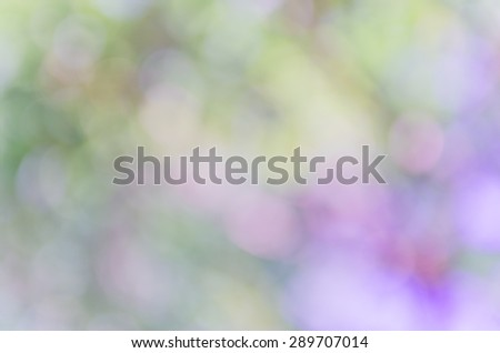 Violet abstract bokeh background from nature environment #289707014