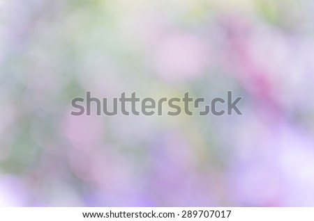 Violet abstract bokeh background from nature environment #289707017