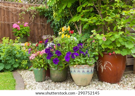 Shady corner of a garden with containers full of colorful flowers #290752145