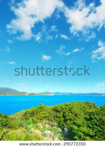 Sardinia coastline seen from Cala Dragunara, Italy #290772350