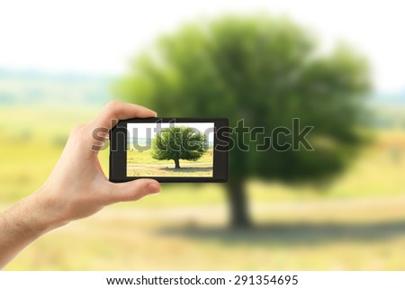 Hand taking photo of tree in field by smartphone