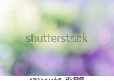 beautiful natural bokeh background and blurry focus #291483500