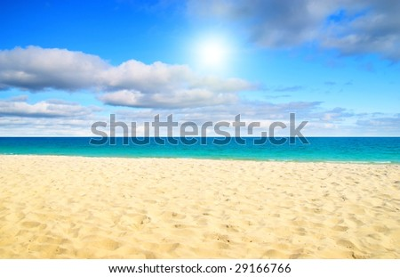 sand and ocean #29166766