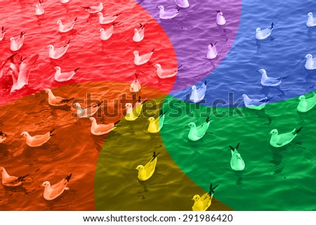 LGBT or GLBT lesbian, gay, bisexual, and transgender flag background bird and sea for sexual diversity freedom concept. #291986420