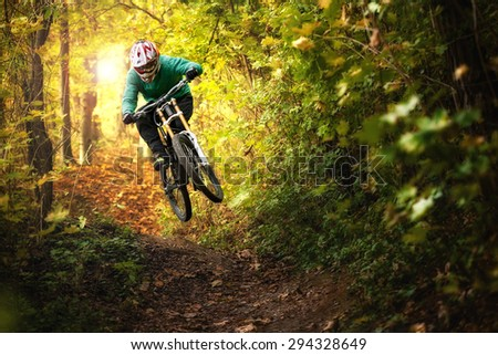 Mountainbiker rides in autumn forest Royalty-Free Stock Photo #294328649