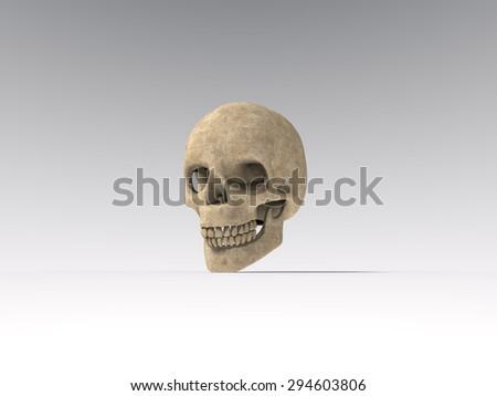 skull #294603806