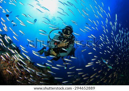 Scuba diving with fish on coral reef Royalty-Free Stock Photo #294652889