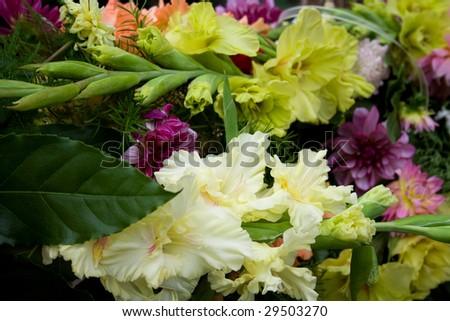 Flowers #29503270