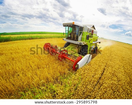 Aerial view of combine on harvest field in Serbia. Wide angle shot. #295895798