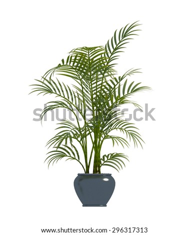 plant iSolated Collection #296317313