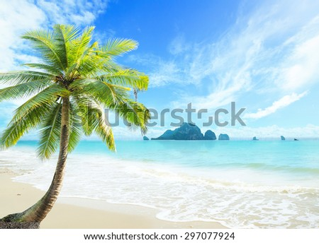 Summer holiday concept: Coconut palm tree with beautiful beach background #297077924