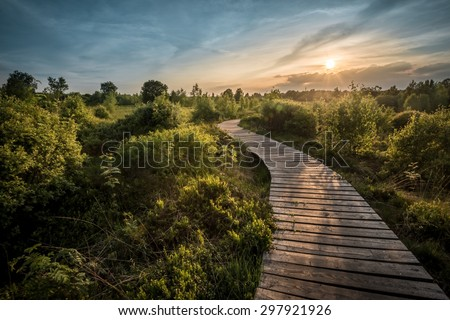 Path into the sun... Royalty-Free Stock Photo #297921926