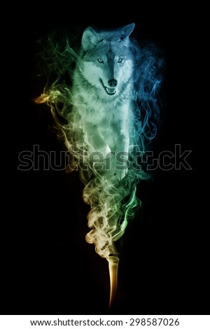 beautiful image of a wolf.. animal kingdom. jumping out of the smoke. wildlife picture. great  tattoo, zoo love bird. tropical