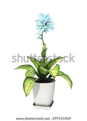 green potted plant isolated on white background. #299155469