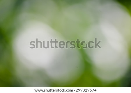 Green blurred background and sunlight #299329574