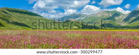 Beautiful summer landscape at Piano Grande (Great Plain) mountain plateau in the Apennine Mountains, Castelluccio di Norcia, Umbria, Italy #300299477