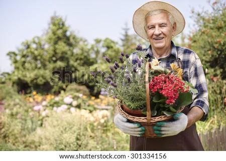 Basket of beautiful flowers held by senior man #301334156