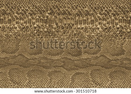 Background. Colored paper structure. Animal skin structure #301510718