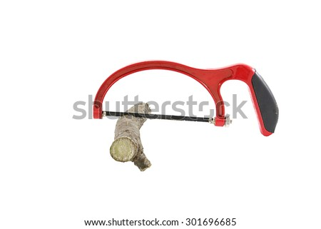 red bucksaw with tree branch (isolated on white background) #301696685