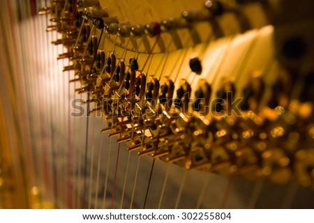 Harp detail Royalty-Free Stock Photo #302255804