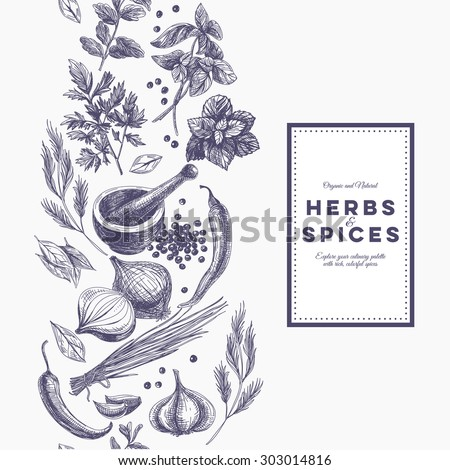 Vector background with hand drawn herbs and spices. Organic and fresh spices illustration. Royalty-Free Stock Photo #303014816