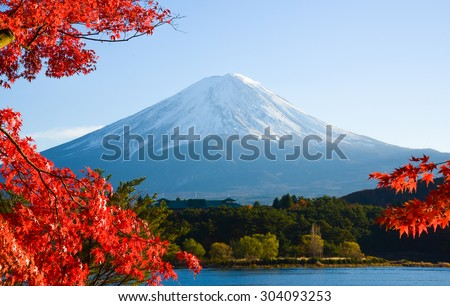 Mt.Fuji in autumn at Lake kawaguchiko in japan.