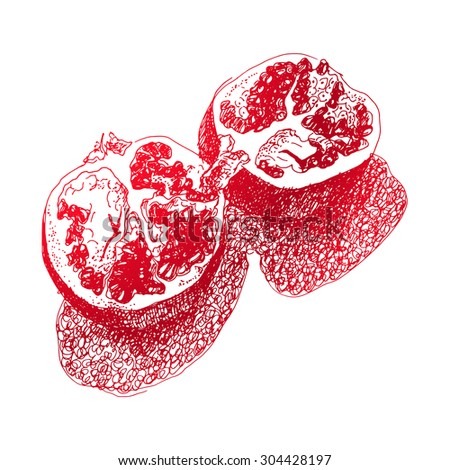 Sloppy sketch halved pomegranate. Monochrome red on white. #304428197