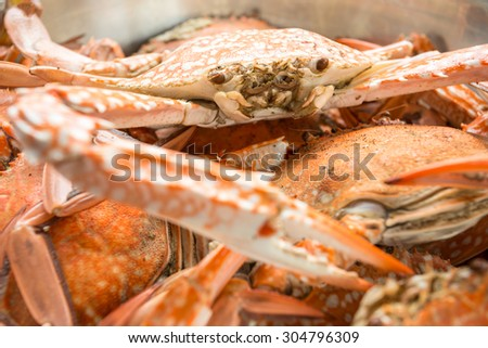 red crabs in bowl #304796309