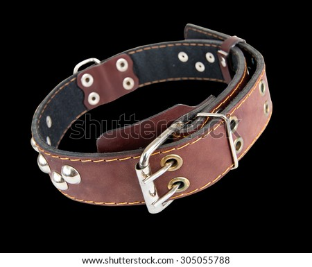 Leather collar for dogs with metal rivets. Isolated.