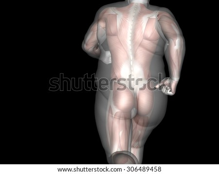 Concept, conceptual 3D fat overweight vs slim fit diet with muscles young man isolated on black background metaphor weight loss, body, fitness, fatness, obesity, health, healthy, male, dieting, shape #306489458