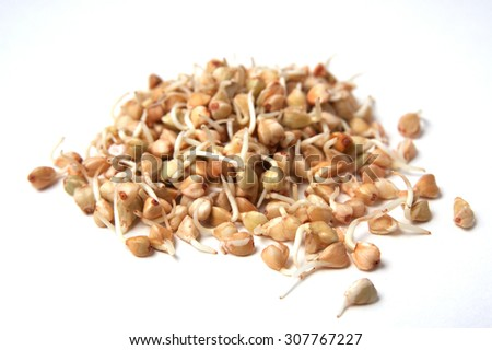 buckwheat sprouts isolated on white #307767227