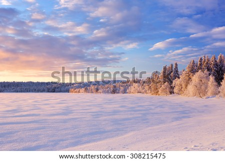 A beautiful lake in Finnish Lapland in Winter. Photographed at �ijäjärvi at sunset. Royalty-Free Stock Photo #308215475
