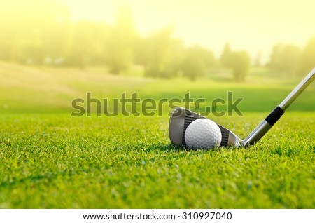 Let's golf Royalty-Free Stock Photo #310927040