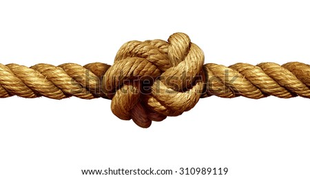Rope knot isolated on a white background as a strong nautical marine line tied together as a symbol for trust and faith and a metaphor for strength or stress. Royalty-Free Stock Photo #310989119