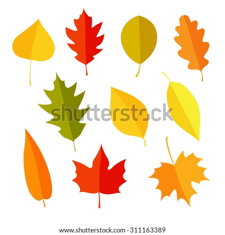 Autumn leaves set, isolated on white background. Simple cartoon flat style. Isolated vector illustration. Design for stickers, logo, web and mobile app.