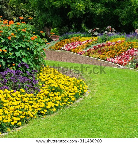 Blossoming flowerbeds in the park #311480960