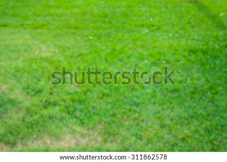 green lawn background #311862578