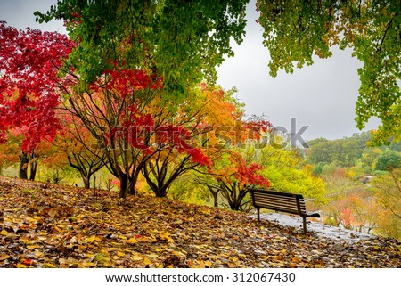 Bench in autumn park during the rain #312067430