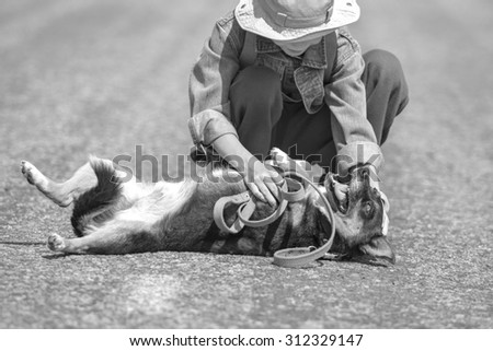 Black and white boy play with dog, focus on dog #312329147