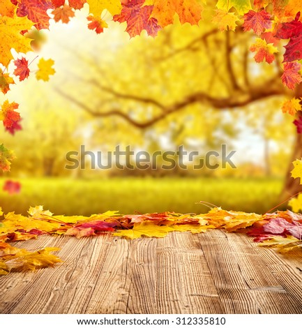 autumn leaves background with wooden planks and copyspace #312335810