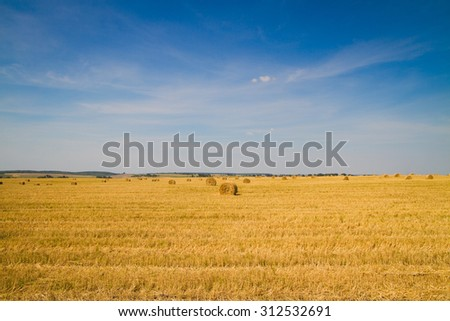 sheaf of hay in the field with blue sky and clouds #312532691