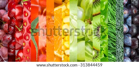 Fresh food. Healthy food background. Collection with different fruits, berries and vegetables #313844459