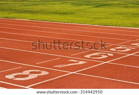 The Racetrack #314442950